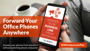 Small Business Remote Phone Plan
